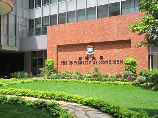 香港大学的合作案例